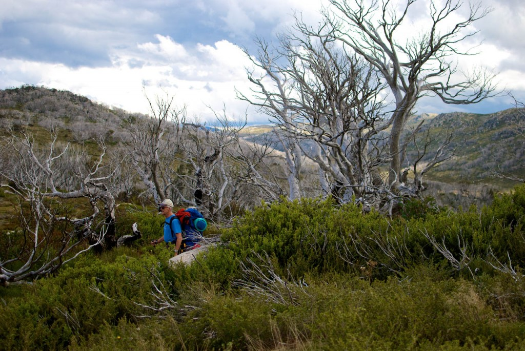 Roger Stuart gets off track near the Kerries Range on the Schlink Hut Walk, Kosciuszko NP, NSW