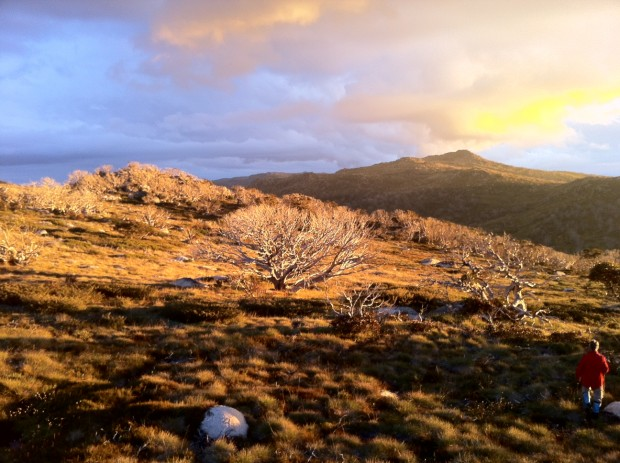 Sunset over Dicky Bogong-Cooper Mountain, Kosciuzsko National Park, NSW