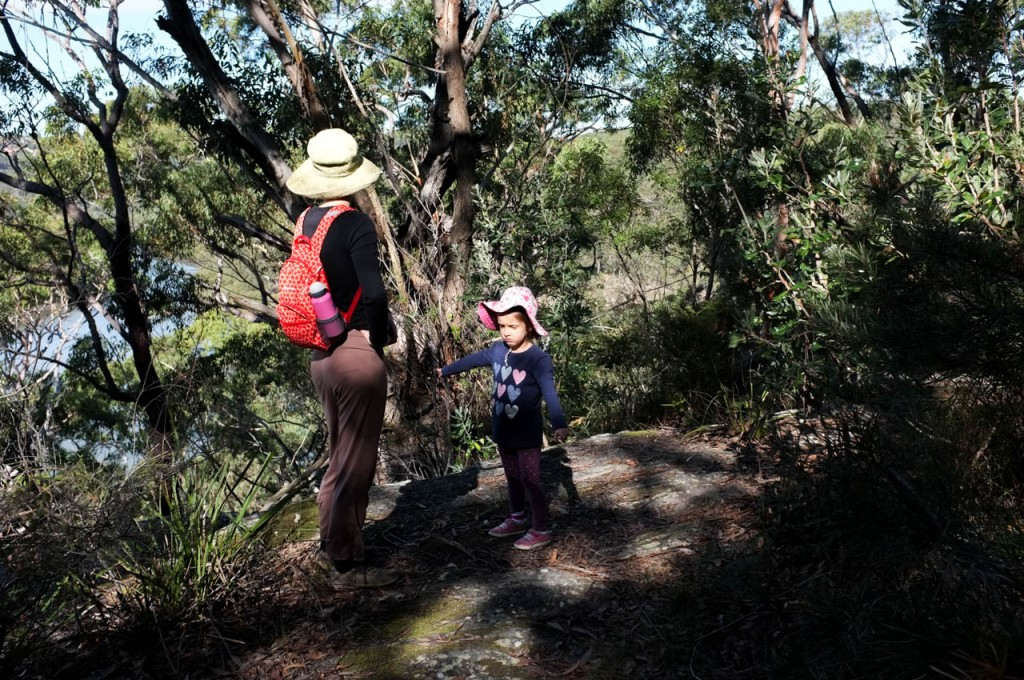 Time to turn around, Georges River NP