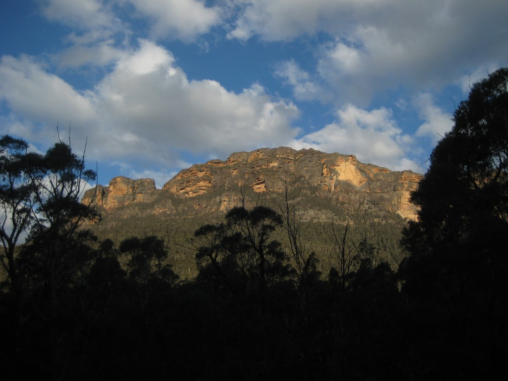 Walking to Blue Gum Forest, Grose Valley, Blue Mountains NP