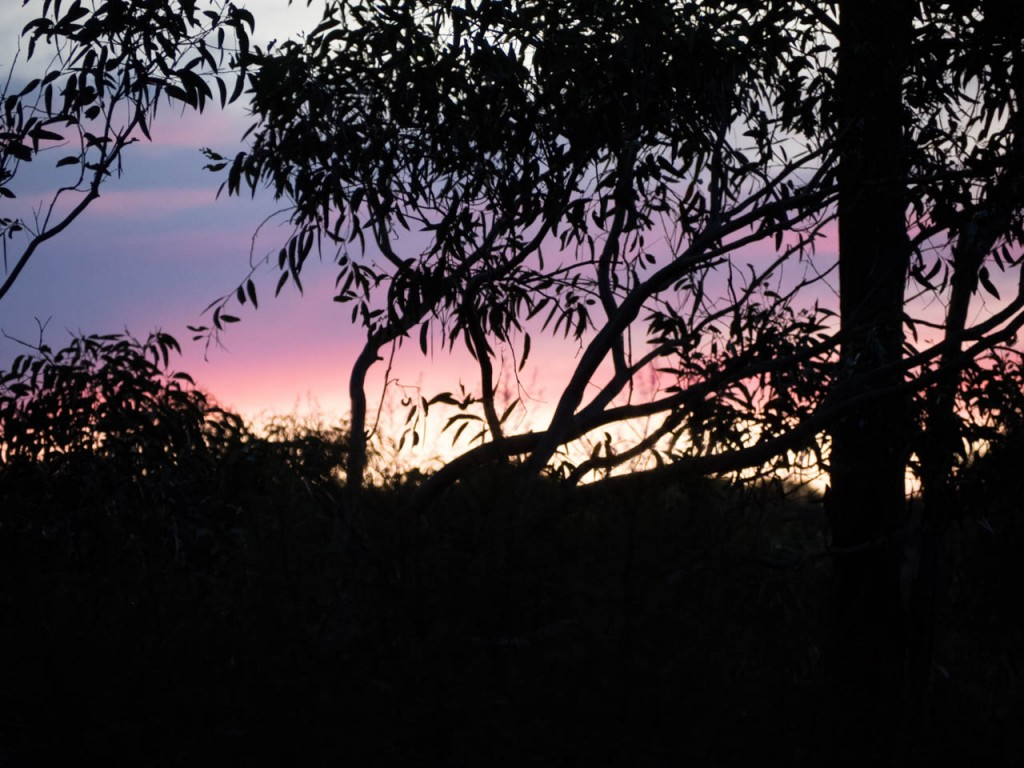 Pink sunset, Gambells Rest, Morton NP