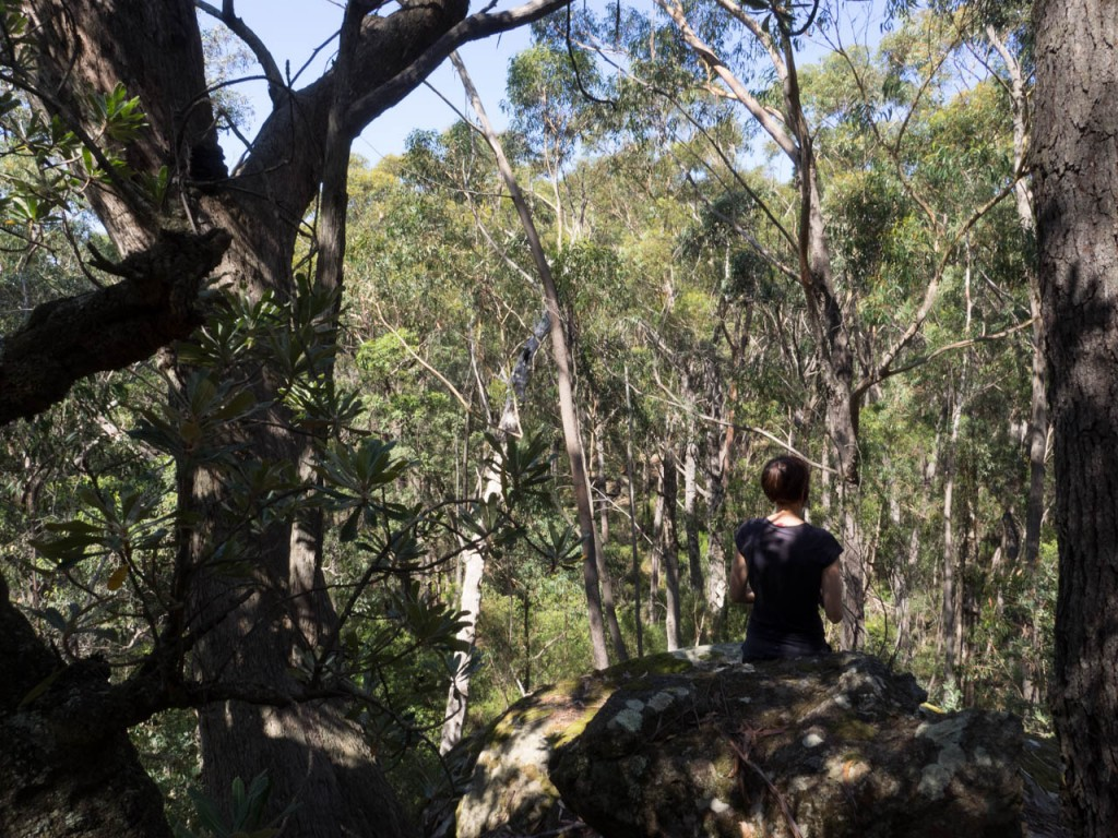 Enjoying a moment's peace on the Mount Carnarvon, Morton NP