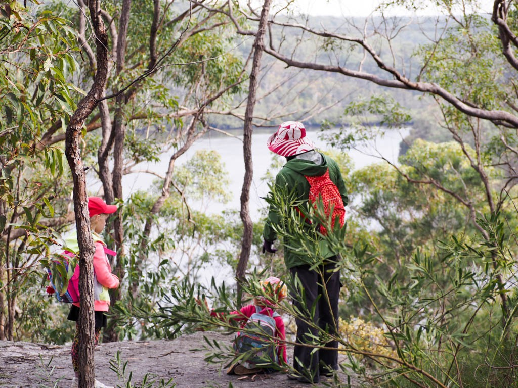 The Ridge walk affords fantastic views over Georges River NP