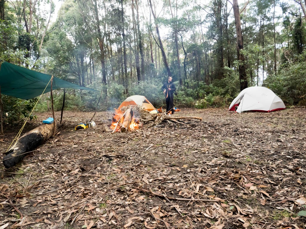 An excellent campsite ust beneath the summit of Mt Warramalong, Olney State Forest