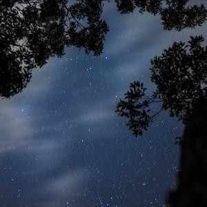 Starry night at Uloola Falls, Royal NP