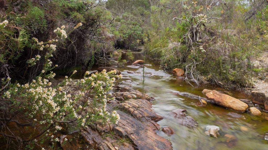 Styles Creek is a reliable source of water
