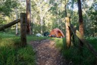 Darug Area, Euroka Campground, Blue Mountains National Park