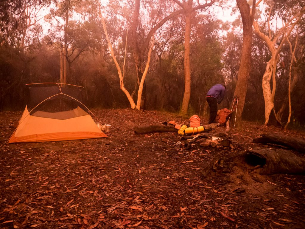 Campsite in clearing